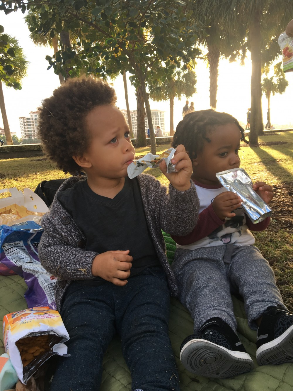 Playtime; picnic in the park